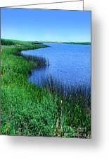 Lake Of The Shining Waters Greeting Card