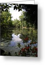 Lake On The Plantation Greeting Card