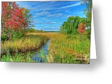 Lake Sixteen Greeting Card