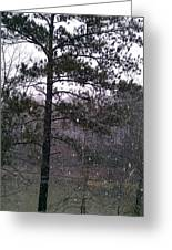Lake Snowfall Greeting Card