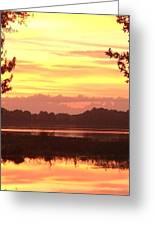 Lake Spivey Morning Greeting Card