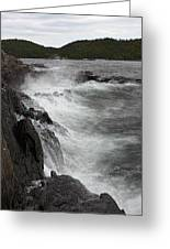 Lake Superior Pukaskwa National Park Greeting Card