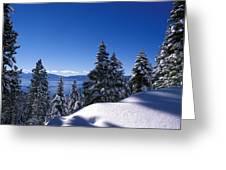 Lake Tahoe In Winter Greeting Card