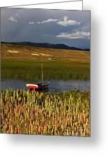 Lake Titicaca And Quinoa Field Greeting Card