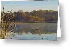 Lake Towhee In Autumn Greeting Card