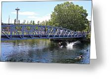 Lake Union Park Greeting Card