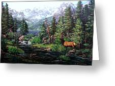 Lake Verna Elk Greeting Card by W  Scott Fenton
