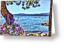Lake View On Lake Tahoe By Diana Sainz Greeting Card