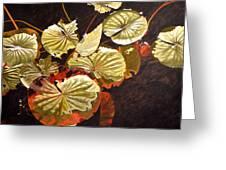 Lake Washington Lily Pad 11 Greeting Card