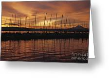 Lake Washington With Mount Rainier And Marina Greeting Card
