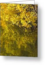 Lake Winona Autumn 12 Greeting Card