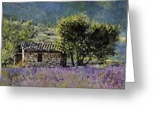 Lala Vanda Greeting Card