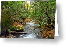 Lamance Creek  Greeting Card