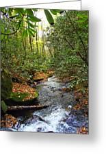 Lamance Creek Vertical Greeting Card