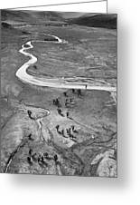 Lamar Valley Black And White Greeting Card