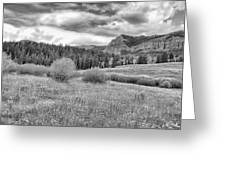 Lamar Valley Looking Towards Specimen Ridge Bw- Yellowstone Greeting Card
