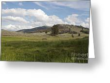 Lamar Valley No. 2 Greeting Card