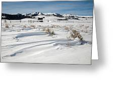 Lamar Valley Winter Scenic Greeting Card