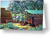 Lamb's Barn Greeting Card