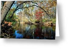 Lamington River At Tewksbury  Greeting Card