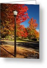 Lamp Post On The Corner Greeting Card