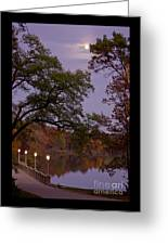 Lamplight By Moonlight Greeting Card