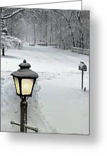 Lamppost In Snow Greeting Card