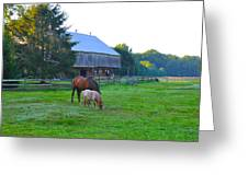 Lancaster County Farm Greeting Card