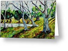 Land Park Dancing Trees Greeting Card