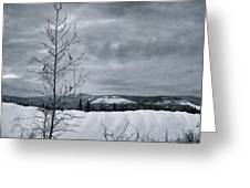 Land Shapes 15 Greeting Card by Priska Wettstein