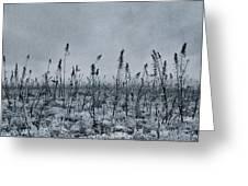 Land Shapes 20 Greeting Card by Priska Wettstein