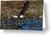 Landing Approach Greeting Card