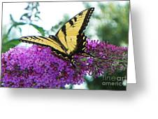 Landing Zone Greeting Card