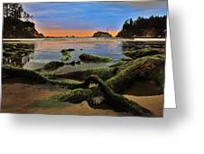 Lands End Greeting Card by Benjamin Yeager