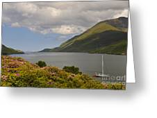 Landscape Around Killary Harbour Greeting Card