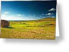 Landscape At Summer Greeting Card