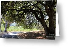 Landscape At The Jack London Ranch In The Sonoma California Wine Country 5d24583 Greeting Card