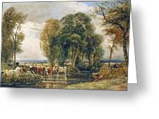 Landscape Cattle In A Stream With Sluice Gate Greeting Card