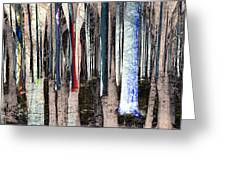 Landscape Forest Trees Greeting Card