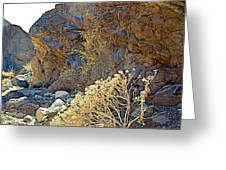 Landscape Of Big Painted Canyon Trail In Mecca Hills-ca Greeting Card