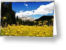 Landscape Of Canada 2 Greeting Card