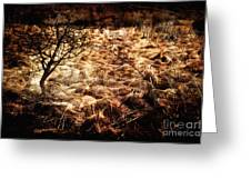 Landscape Of Life Greeting Card