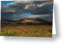 Landscape Of Poppy Fields In Front Of Mountain Range With Dramat Greeting Card
