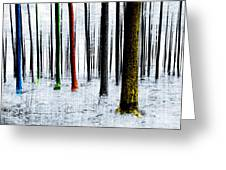 Landscape Winter Forest Pine Trees Greeting Card