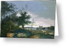 Landscape With A Fox Chasing Geese Greeting Card