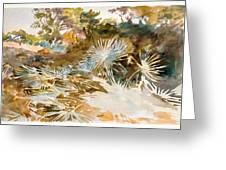 Landscape With Palmettos Greeting Card