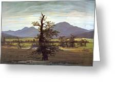 Landscape With Solitary Tree Greeting Card