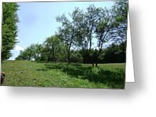 Landscape1 Greeting Card