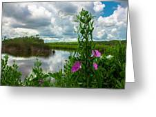 Landscaped Greeting Card