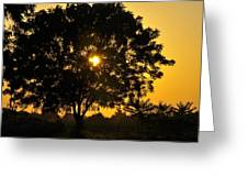 Landscapes Art Greeting Card
